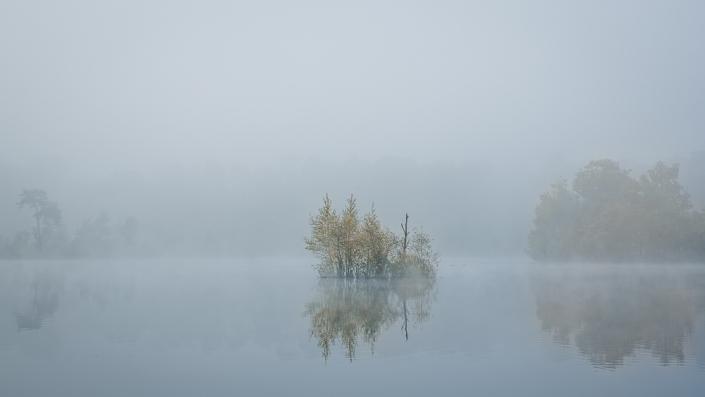 Stilte | Mathijs Frenken | Natuurfotografie | Natuurfotograaf